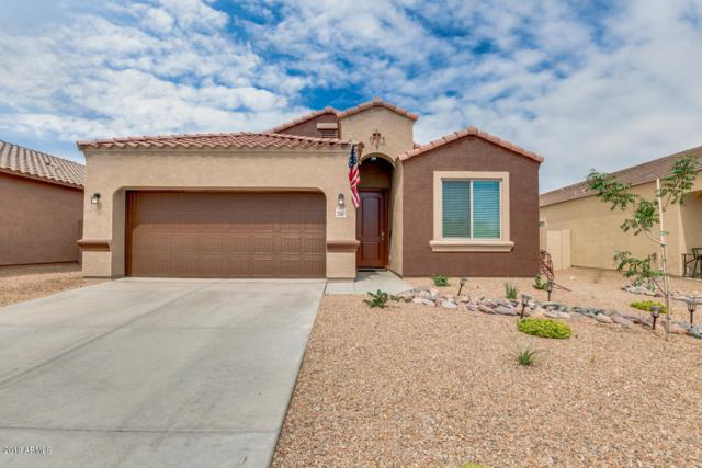 2347 S 235TH Lane, Buckeye, AZ 85326 (MLS #5945128) :: Yost Realty Group at RE/MAX Casa Grande