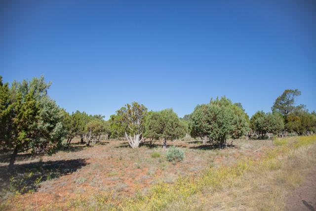2339 Voyager Circle, Overgaard, AZ 85933 (MLS #5945181) :: Long Realty West Valley