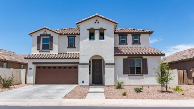 3238 N 31ST Street, Mesa, AZ 85213 (MLS #5945292) :: Riddle Realty