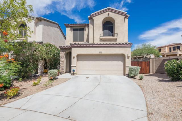 1672 W Lacewood Place, Phoenix, AZ 85045 (MLS #5945305) :: Revelation Real Estate