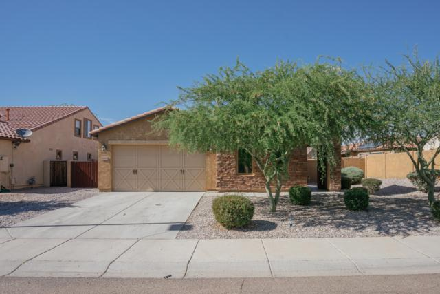 16958 W Rio Vista Lane, Goodyear, AZ 85338 (MLS #5945348) :: Riddle Realty