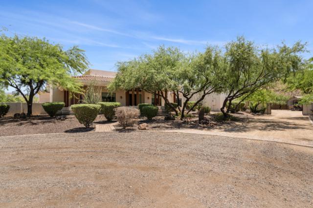 12 W Wildfield Road, New River, AZ 85087 (MLS #5945358) :: Occasio Realty