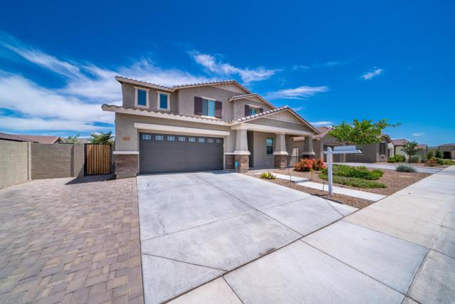 3114 E Preston Street, Mesa, AZ 85213 (MLS #5945417) :: Riddle Realty