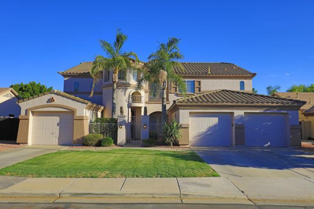 5429 E Harmony Avenue, Mesa, AZ 85206 (MLS #5945555) :: My Home Group