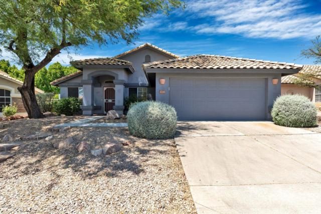 6348 E Riverdale Street, Mesa, AZ 85215 (MLS #5945567) :: Openshaw Real Estate Group in partnership with The Jesse Herfel Real Estate Group