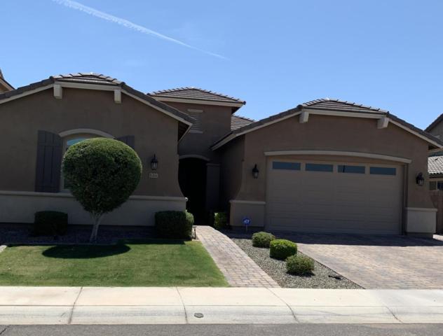 6361 S Fresno Street, Chandler, AZ 85249 (MLS #5945586) :: The Daniel Montez Real Estate Group