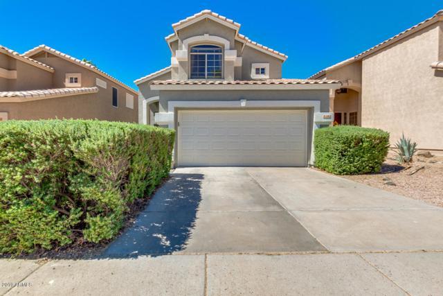 2151 E Briarwood Terrace, Phoenix, AZ 85048 (MLS #5945694) :: Yost Realty Group at RE/MAX Casa Grande