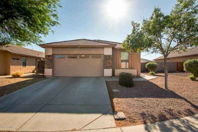 5224 S Dove Butte, Buckeye, AZ 85326 (MLS #5945695) :: CC & Co. Real Estate Team