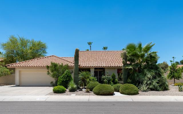11209 W Primrose Lane, Avondale, AZ 85392 (MLS #5945697) :: CC & Co. Real Estate Team
