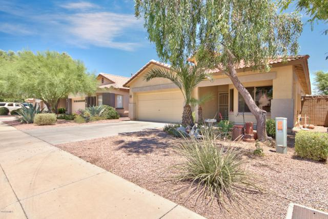 4217 N 125TH Avenue, Litchfield Park, AZ 85340 (MLS #5945711) :: CC & Co. Real Estate Team