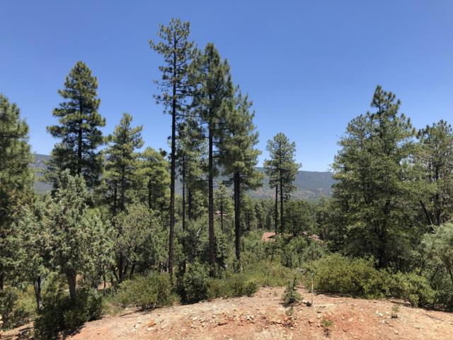 XXXX Forest Trail, Pine, AZ 85544 (MLS #5945790) :: The W Group