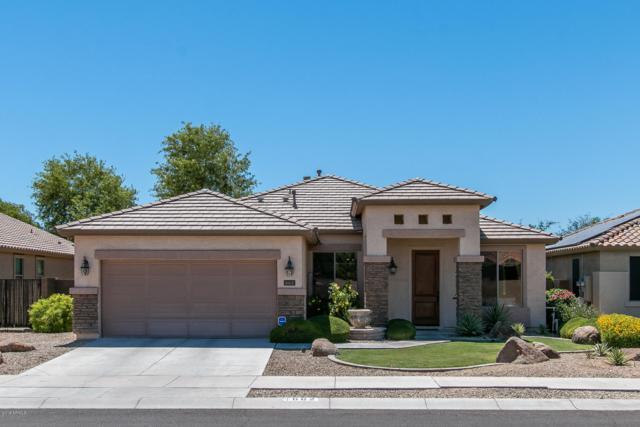 662 S 165TH Lane, Goodyear, AZ 85338 (MLS #5945865) :: Riddle Realty