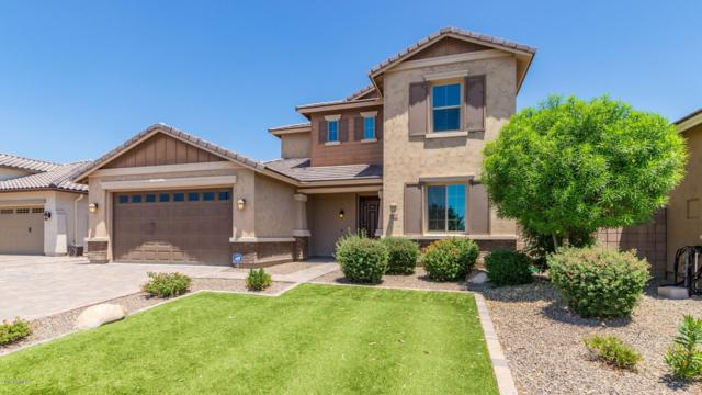 6351 S Fresno Street, Chandler, AZ 85249 (MLS #5946077) :: The Kenny Klaus Team