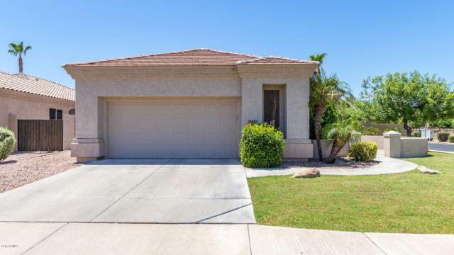 931 W Oriole Way, Chandler, AZ 85286 (MLS #5946116) :: Riddle Realty