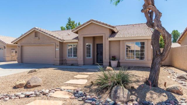 1283 S Anvil Place, Chandler, AZ 85286 (MLS #5946181) :: CC & Co. Real Estate Team