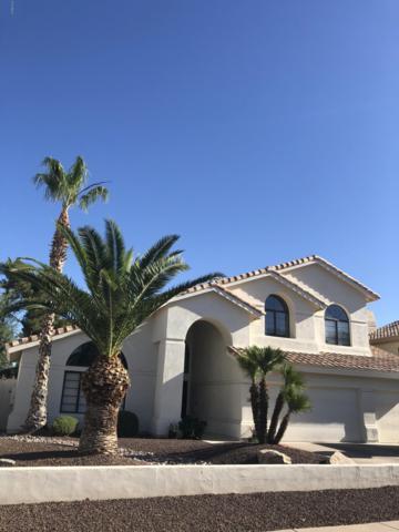 3445 E Tere Street, Phoenix, AZ 85044 (MLS #5946212) :: Relevate | Phoenix