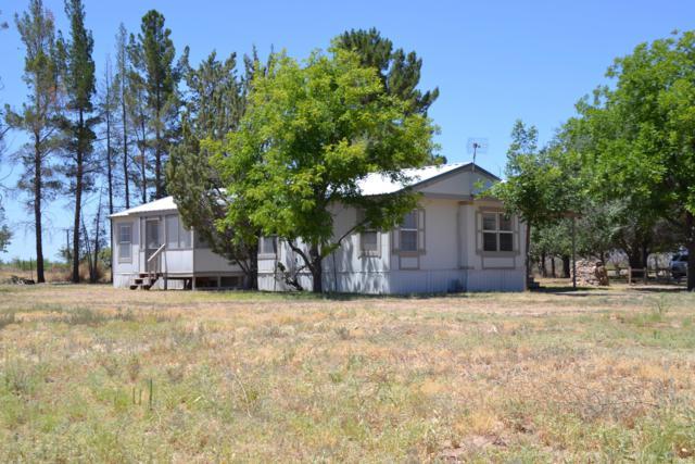 3662 W Whitewater School Road, Elfrida, AZ 85610 (MLS #5946235) :: The Kenny Klaus Team