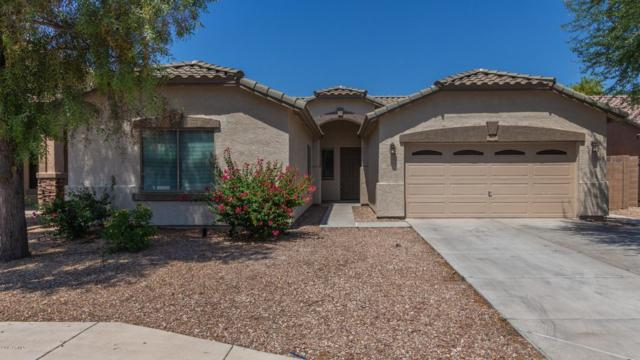 6850 N 72ND Drive, Glendale, AZ 85303 (MLS #5946263) :: Kepple Real Estate Group