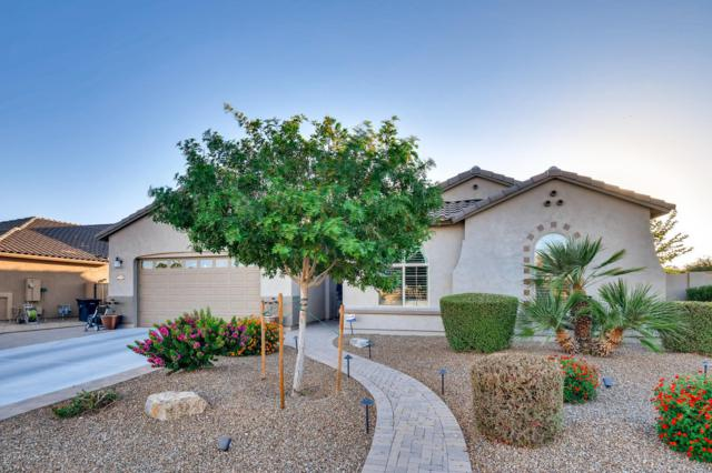 5186 S Opal Place, Chandler, AZ 85249 (MLS #5946264) :: Occasio Realty