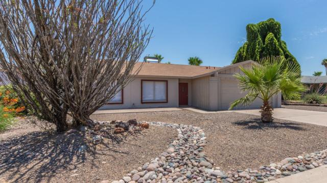 2537 E Sweetwater Avenue, Phoenix, AZ 85032 (MLS #5946277) :: Yost Realty Group at RE/MAX Casa Grande