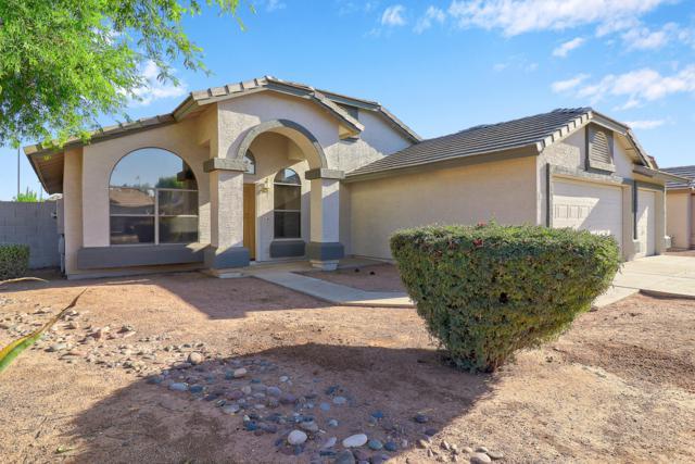 1173 E Betsy Lane, Gilbert, AZ 85296 (MLS #5946294) :: CC & Co. Real Estate Team