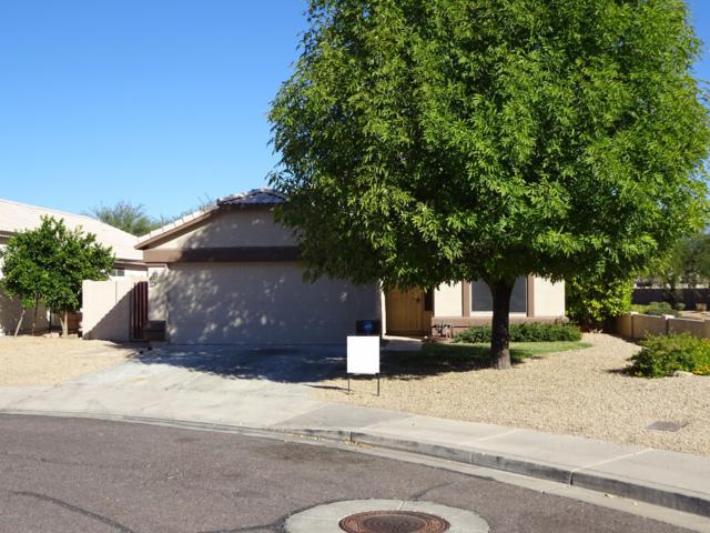 7905 N 54TH Drive, Glendale, AZ 85301 (MLS #5946343) :: Kepple Real Estate Group