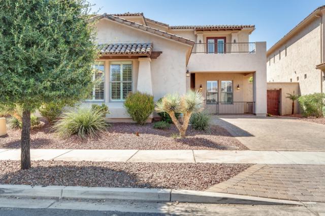 14606 W Hidden Terrace Loop, Litchfield Park, AZ 85340 (MLS #5946367) :: The Garcia Group