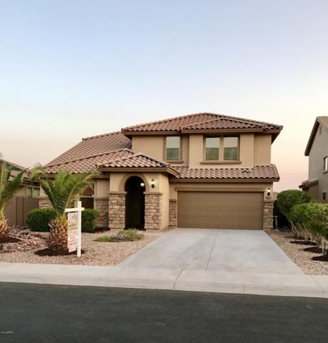 22023 W Hadley Street, Buckeye, AZ 85326 (MLS #5946371) :: The Property Partners at eXp Realty