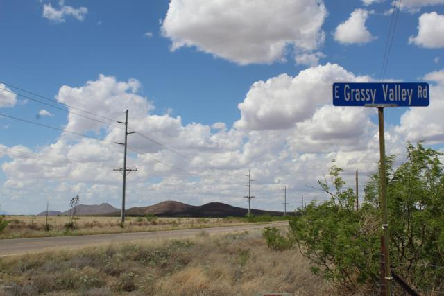 TBD E Grassy Valley Road, Pearce, AZ 85625 (MLS #5946380) :: Yost Realty Group at RE/MAX Casa Grande