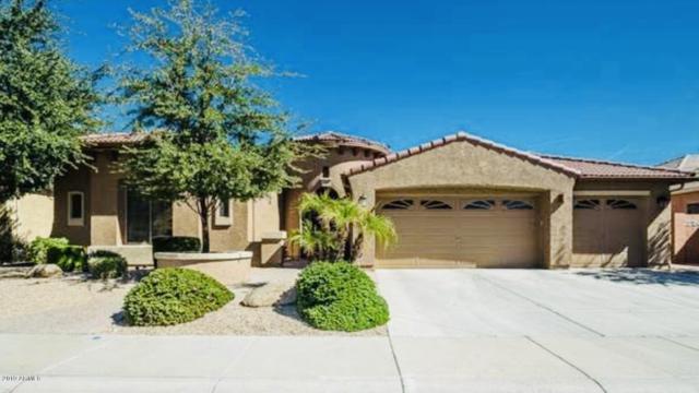 5625 N 133RD Avenue, Litchfield Park, AZ 85340 (MLS #5946448) :: CC & Co. Real Estate Team