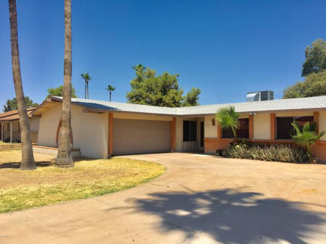 4608 W Carol Avenue, Glendale, AZ 85302 (MLS #5946453) :: CC & Co. Real Estate Team