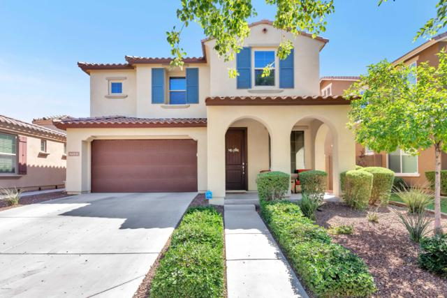 2233 N Park Meadows Drive, Buckeye, AZ 85396 (MLS #5946503) :: The Property Partners at eXp Realty