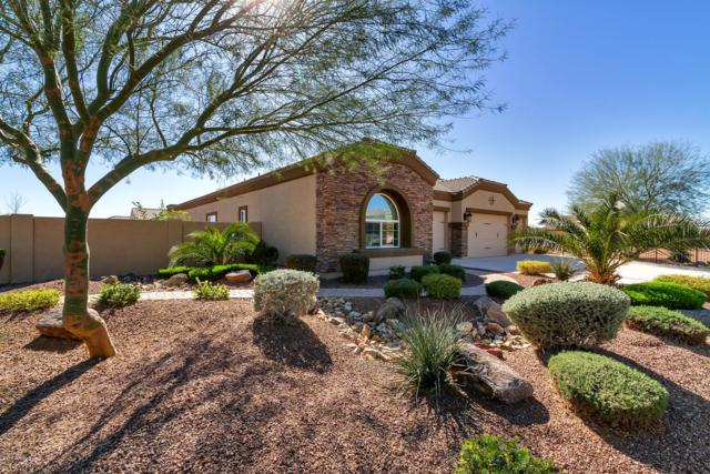 8365 W Missouri Avenue, Glendale, AZ 85305 (MLS #5946517) :: Yost Realty Group at RE/MAX Casa Grande