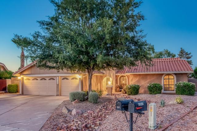 3938 E Cherokee Street, Phoenix, AZ 85044 (MLS #5946545) :: Relevate | Phoenix