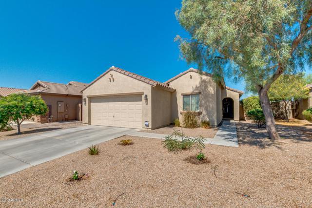 1284 S 238TH Lane, Buckeye, AZ 85326 (MLS #5946575) :: The Property Partners at eXp Realty
