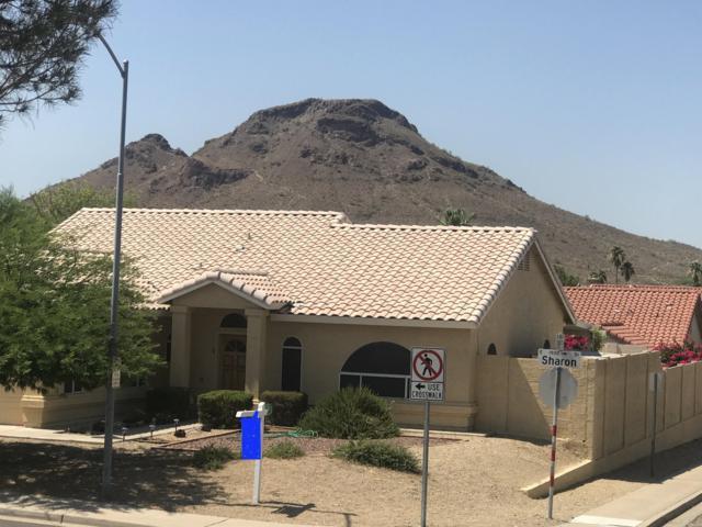 1832 E Sharon Drive, Phoenix, AZ 85022 (MLS #5946597) :: The Laughton Team