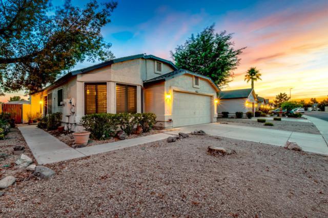 15094 N 85TH Drive, Peoria, AZ 85381 (MLS #5946663) :: The Laughton Team