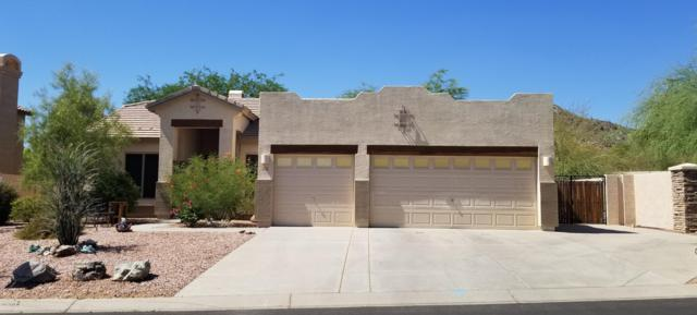 9642 E Glencove Circle, Mesa, AZ 85207 (MLS #5946696) :: The Kenny Klaus Team