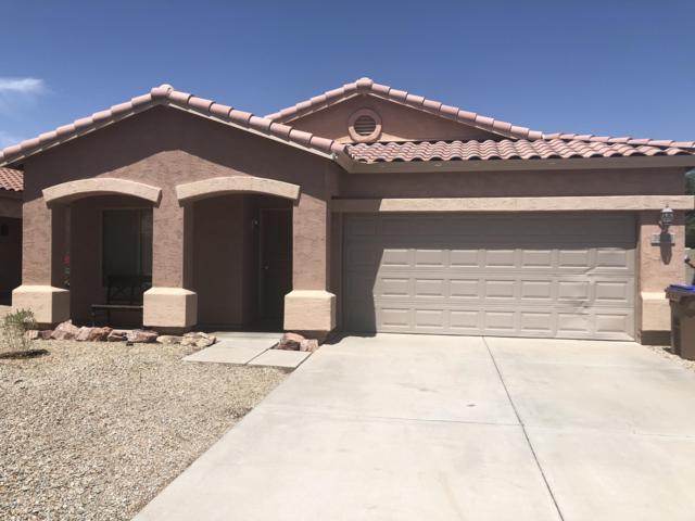 30225 N Royal Oak Way, San Tan Valley, AZ 85143 (MLS #5946704) :: Occasio Realty