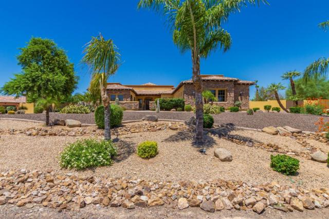 5818 N 129TH Avenue, Litchfield Park, AZ 85340 (MLS #5946725) :: CC & Co. Real Estate Team