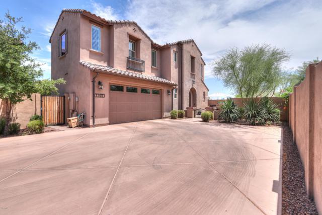 1149 E Muirwood Drive, Phoenix, AZ 85048 (MLS #5946843) :: Revelation Real Estate