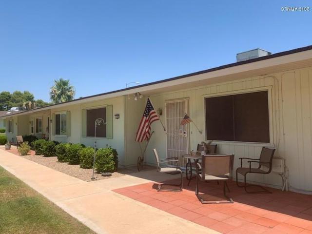 13607 N Newcastle Drive, Sun City, AZ 85351 (MLS #5946867) :: Kortright Group - West USA Realty
