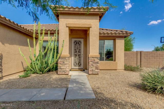 10090 N 86TH Lane, Peoria, AZ 85345 (MLS #5946882) :: The Pete Dijkstra Team