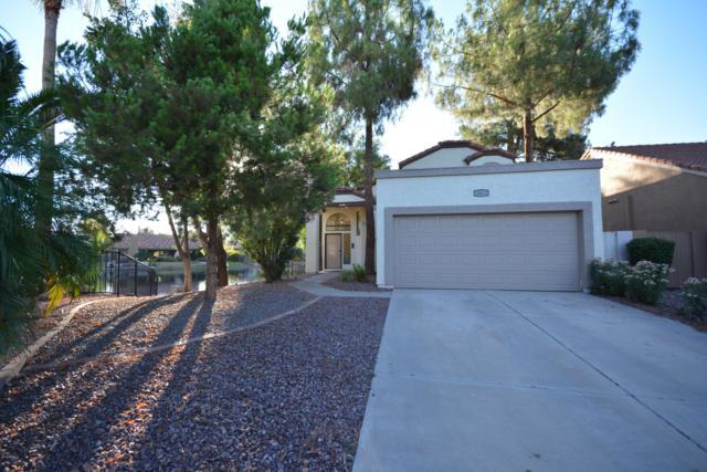 1649 E Rock Creek Circle, Chandler, AZ 85225 (MLS #5946898) :: Keller Williams Realty Phoenix