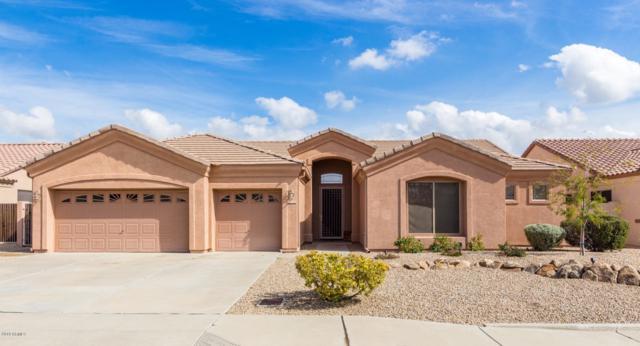 24801 N 45TH Drive, Glendale, AZ 85310 (MLS #5946921) :: The Ford Team
