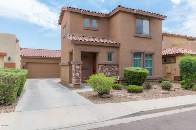 2613 E Hawken Way, Chandler, AZ 85286 (MLS #5946976) :: Keller Williams Realty Phoenix