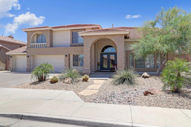 13515 W Medlock Drive, Litchfield Park, AZ 85340 (MLS #5947059) :: CC & Co. Real Estate Team