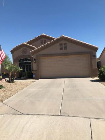 11109 W Madisen Ellise Drive W, Surprise, AZ 85378 (MLS #5947156) :: Homehelper Consultants