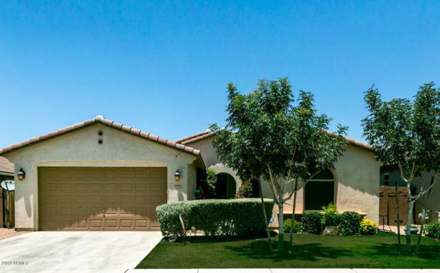 1146 W Date Road, San Tan Valley, AZ 85140 (MLS #5947180) :: The Pete Dijkstra Team