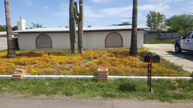 15623 N 69TH Avenue, Peoria, AZ 85382 (MLS #5947245) :: Brett Tanner Home Selling Team